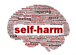 Self-harm Training Days